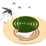 Cảnh báo nguy cơ mù mắt và ung thư phổi do dùng nhang muỗi
