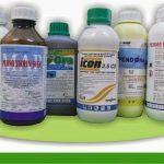 Tổng hợp các loại thuốc diệt côn trùng hiệu quả nhất hiện nay